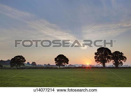 Stock Photo of England, Somerset, Glastonbury. Sunrise over.
