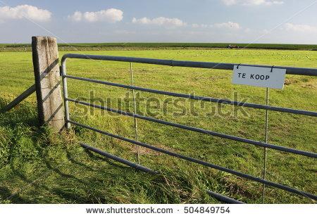 Pastureland Stock Photos, Royalty.