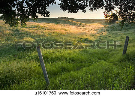 Stock Photography of Fence and pasture land, Alberta, Canada.