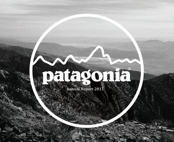 What mountains are in the Patagonia logo?.