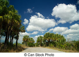 Stock Photography of Looking up at a round patch of blue sky.