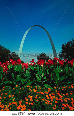 Stock Photo of View looking across a patch of colorful flowers up.