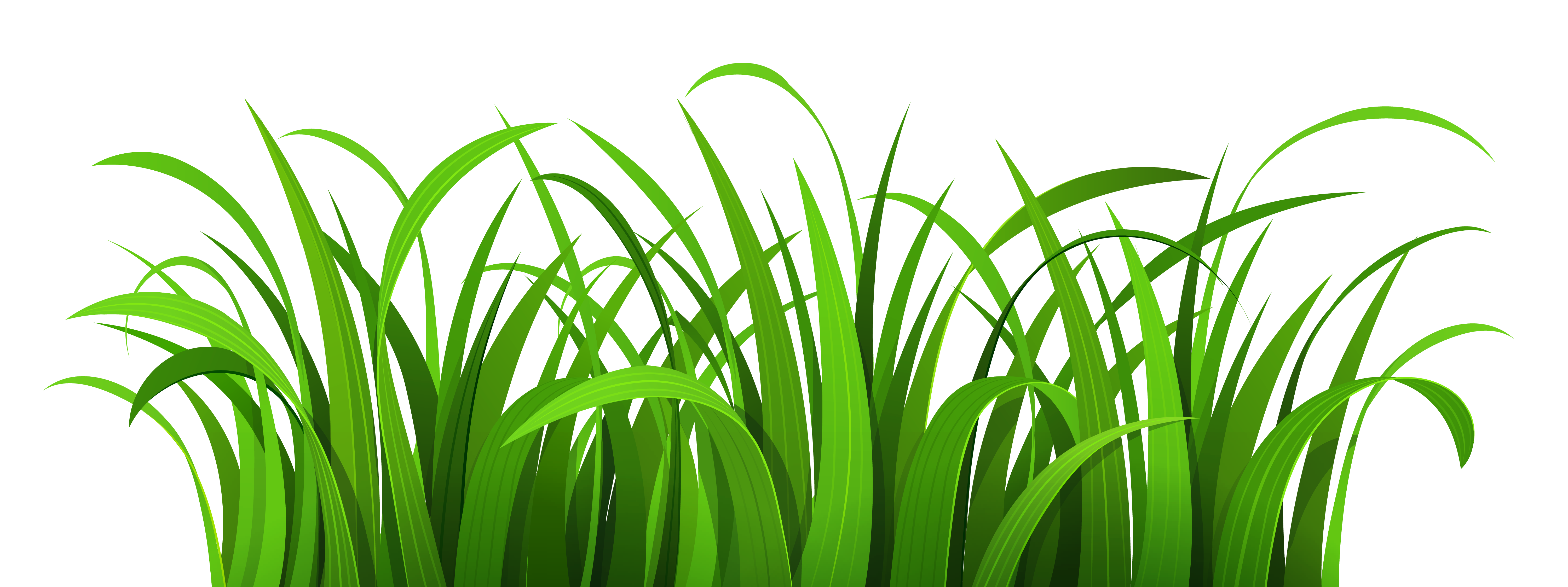 Grass Patch PNG Clipart.