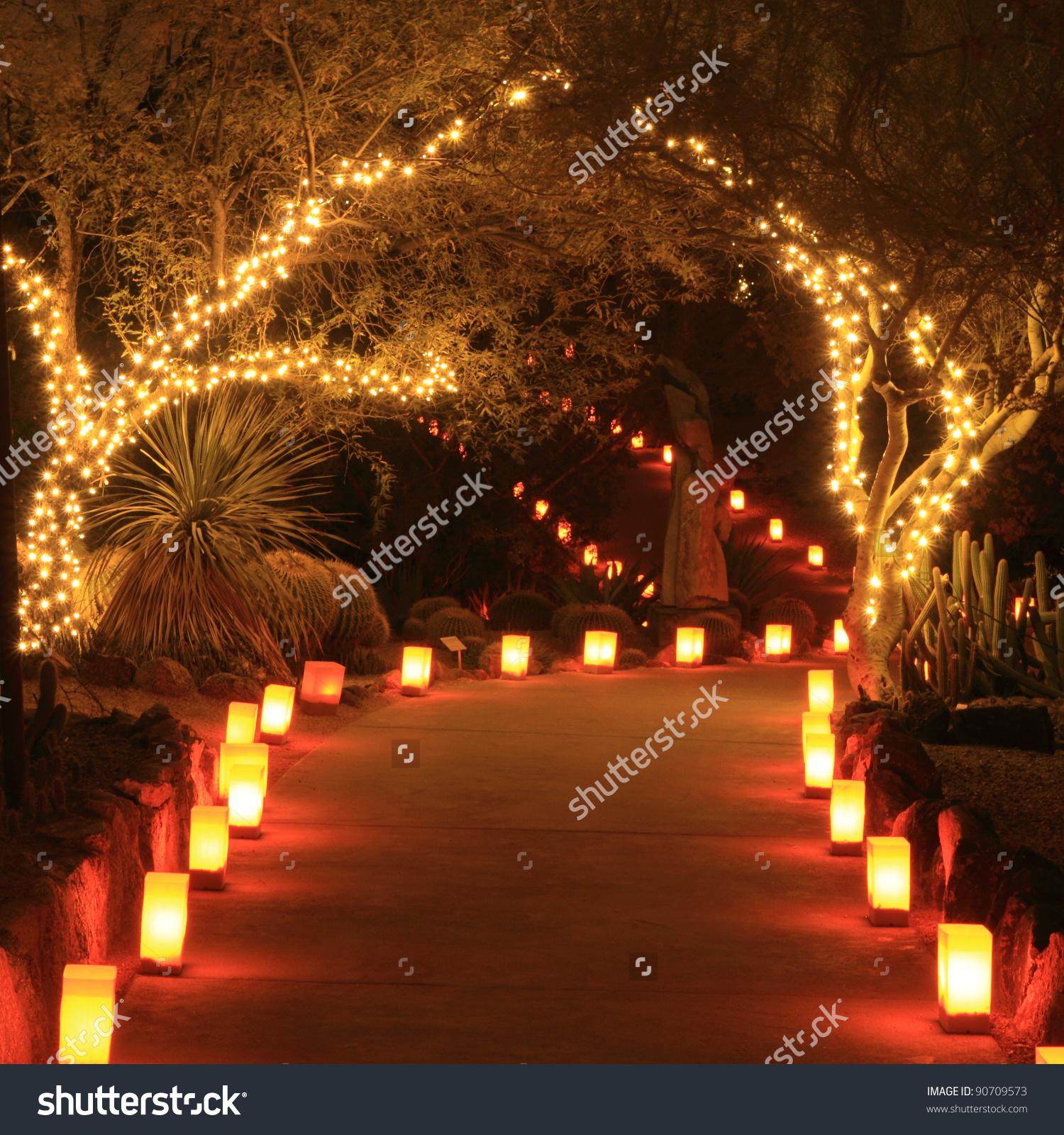Trees Path Lit Holiday Lights Luminarias Stock Photo 90709573.