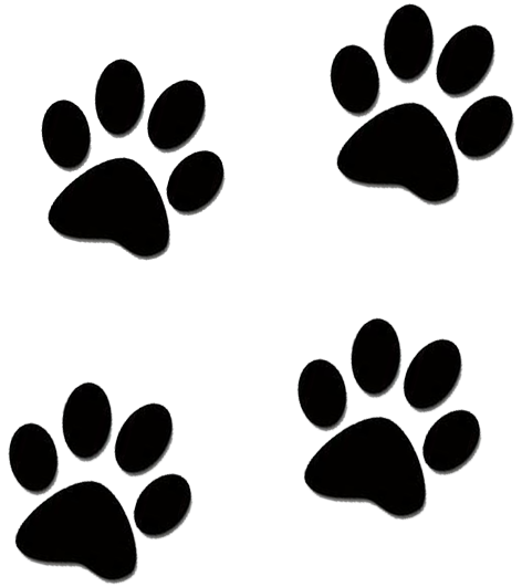 Patinha cachorro png clipart images gallery for free.