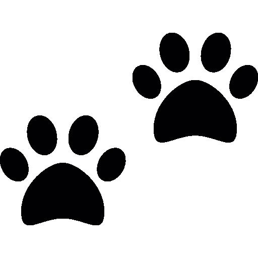 Cães patas.