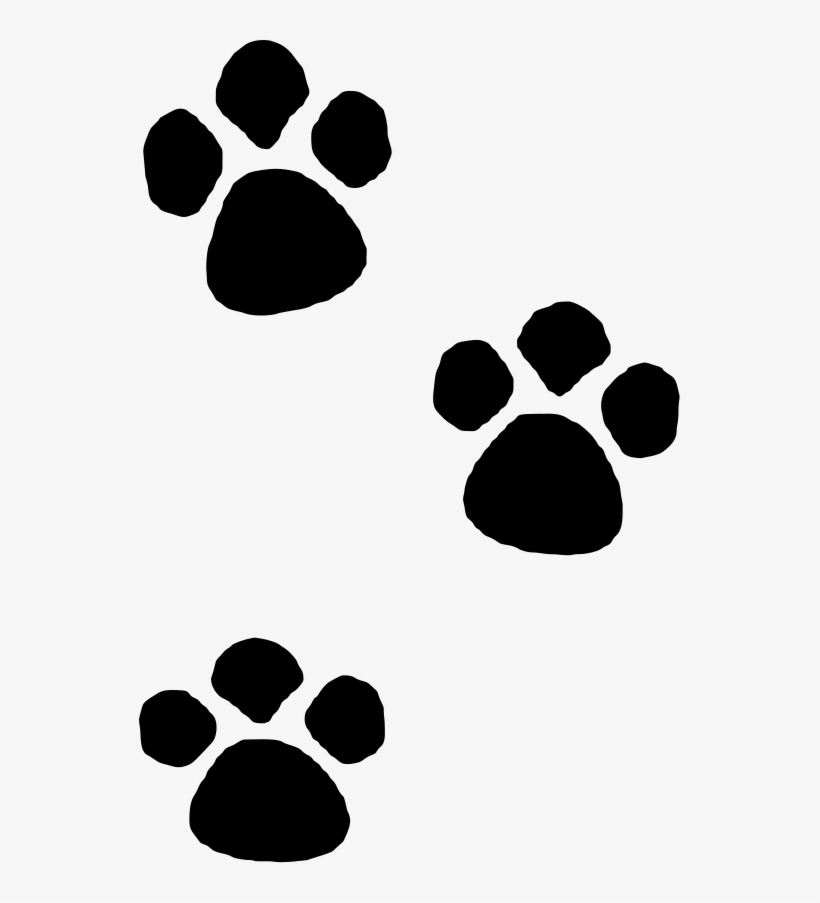 Paw Clipart Toe.
