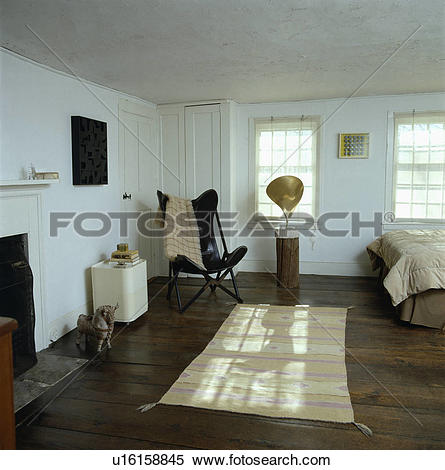 Stock Image of Black Butterfly chair and patterned cream Ikat rug.