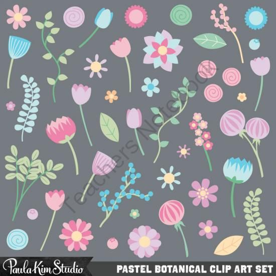 Pastel Flower Clipart from Paula Kim Studio on TeachersNotebook.