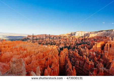 California Summer Desert Theme Vintage Color Stock Photo 221462662.