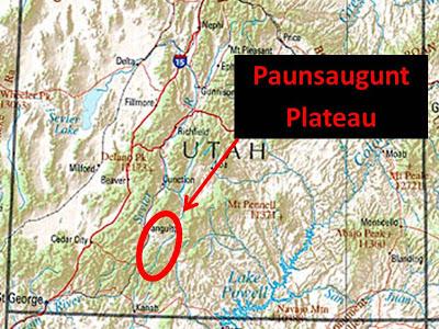 Watching the World Wake Up: 3 P's of the Paunsaugunt Plateau.