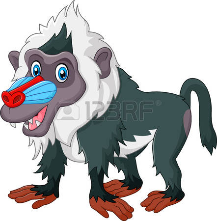 281 Mandrill Baboon Stock Vector Illustration And Royalty Free.