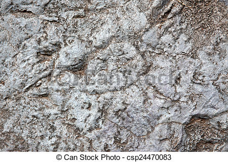 Pictures of Natural Rock Paving Tiles csp24470083.