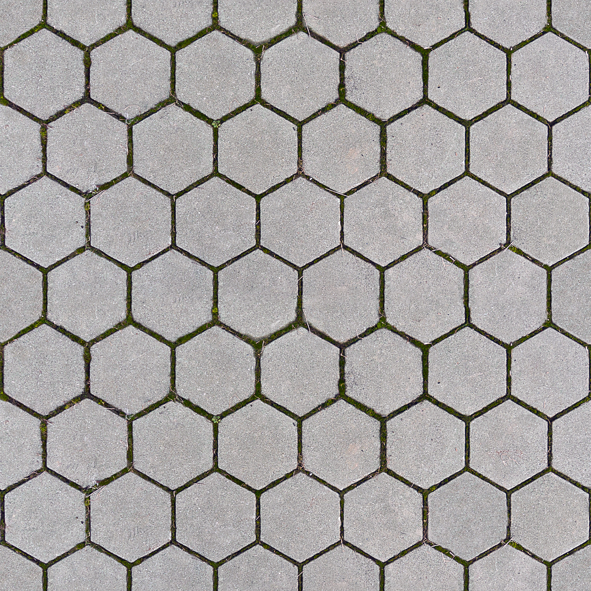 Free photo: Pavement Texture.