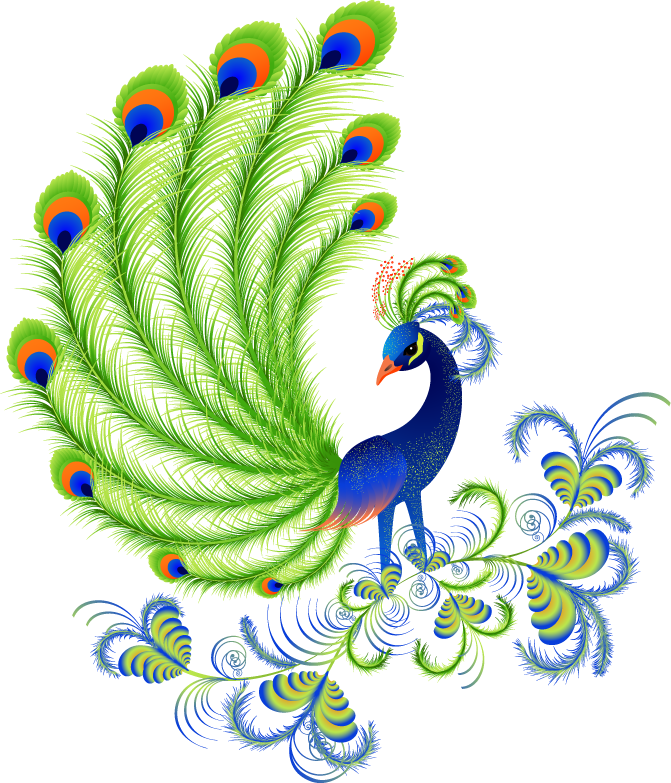 Peacock clipart pavo real, Peacock pavo real Transparent.