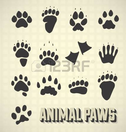 183 Paw Pad Cliparts, Stock Vector And Royalty Free Paw Pad.