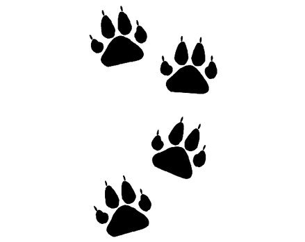 Badger Paw Prints Clipart.