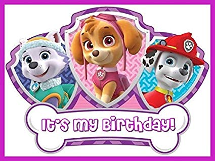 Amazon.com: PAW Patrol.