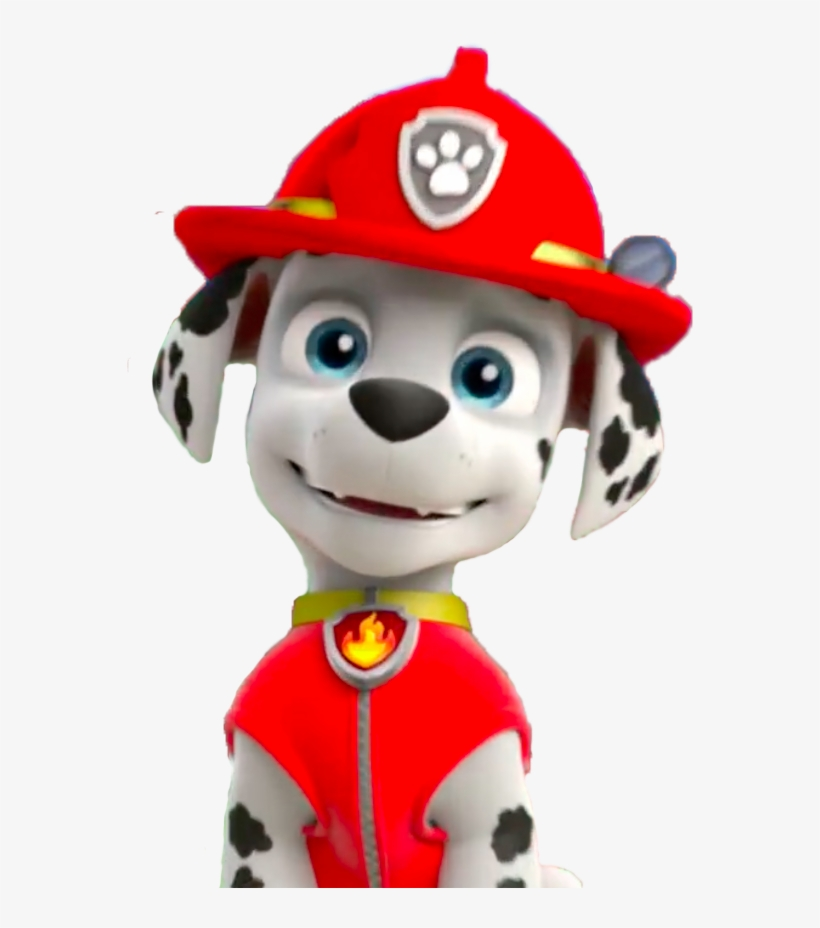 Paw Patrol Marshall Png Transparent PNG.