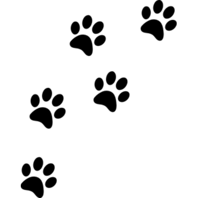 Paw Prints transparent PNG images.