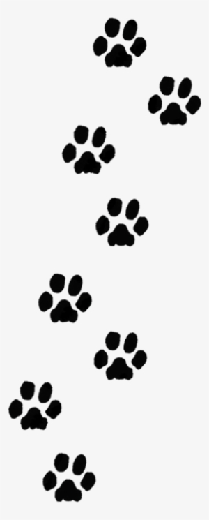 Dog Paw Print PNG, Transparent Dog Paw Print PNG Image Free.