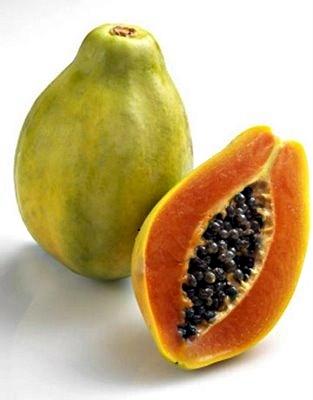 Buy Papaya Trees, Paw Paw Tree, Growing Papaya Fruit.