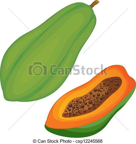 Pawpaw Illustrations and Clipart. 165 Pawpaw royalty free.