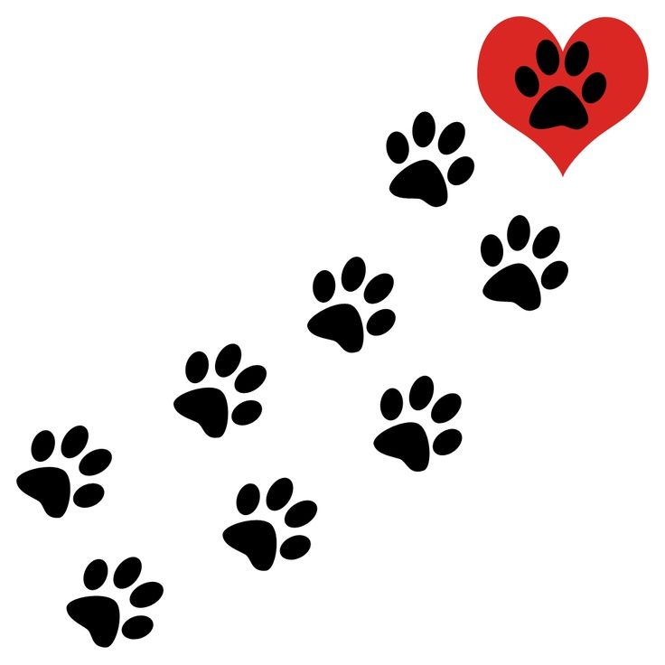 Dog paw prints brown dog paw print clipart cliparts and.