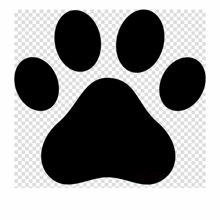 Paws clipart puppy, Paws puppy Transparent FREE for download.