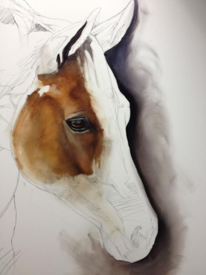 1000+ images about Drawing and Painting Horses on Pinterest.