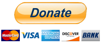 Paypal Donate Button PNG Transparent Paypal Donate Button.