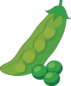 Garden fresh peas and a pea pod.