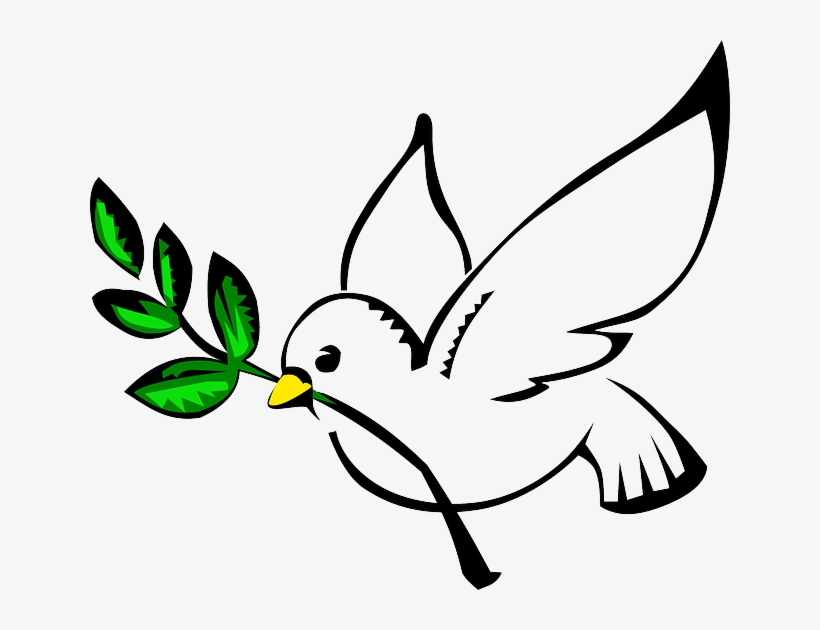 Download Free png White Dove, Olive Branch, Pigeon, Freedom.