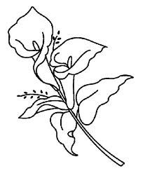 1000+ ideas about Calla Lily Tattoos on Pinterest.