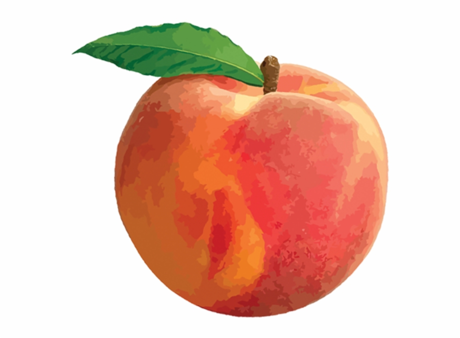 Peach Png.