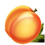 Peach Clipart.