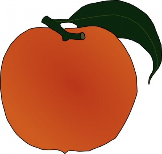 Best Peach Clip Art #16736.