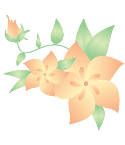 Peach Colored Rose Clipart#2044712.