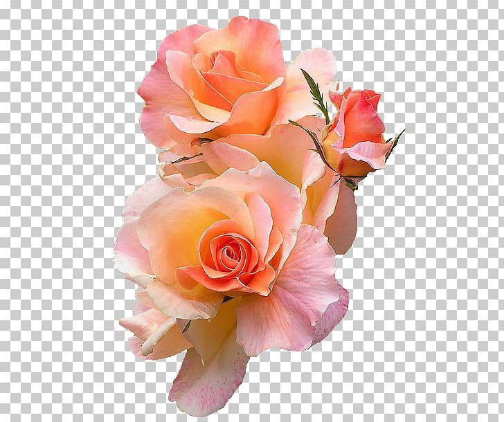 Flower T.