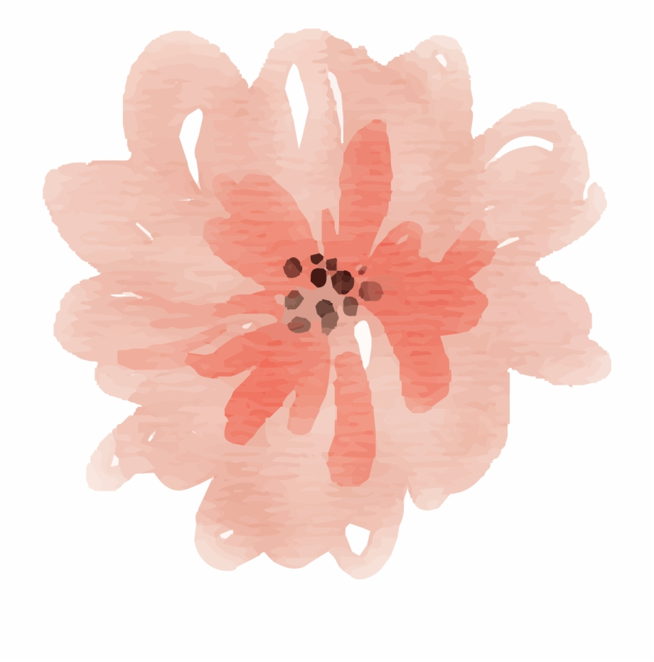 Free Watercolor Flower Images Peach Delight.