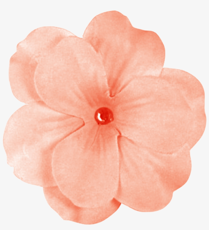 Peach Flowers Png Banner Black And White Stock.