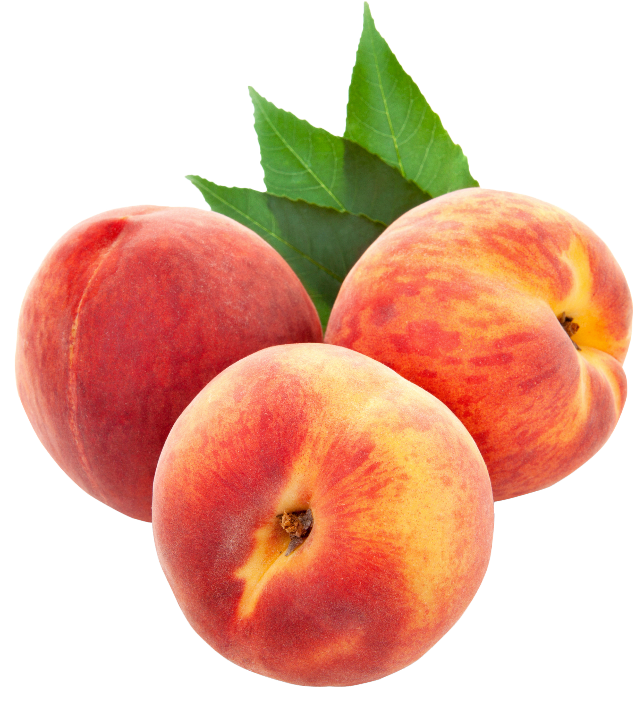 Large PNG Peaches Clipart.