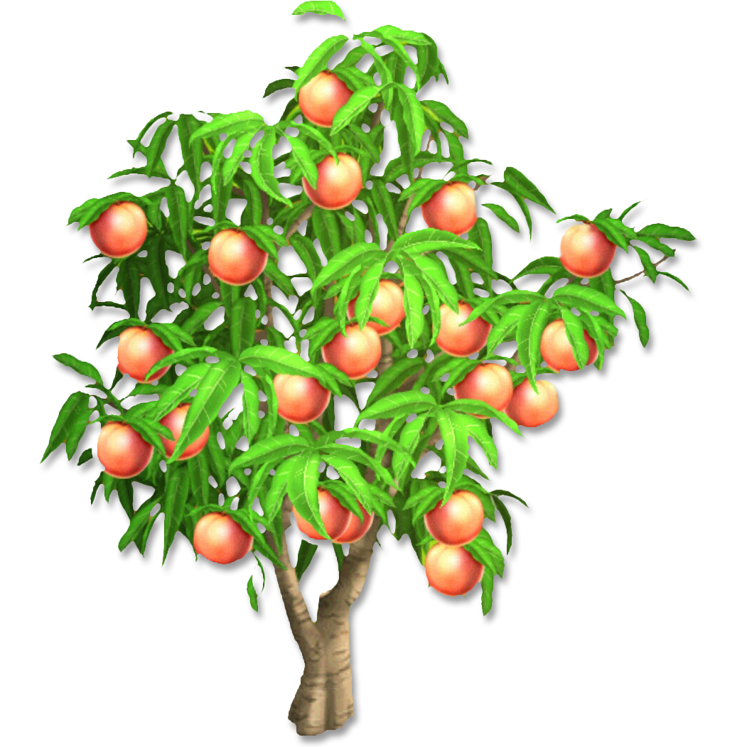 PNG Peach Tree Transparent Peach Tree.PNG Images..