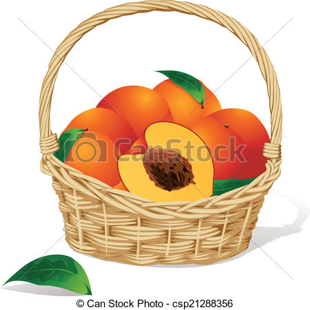 Clipart Vector of basket of peaches on white background.