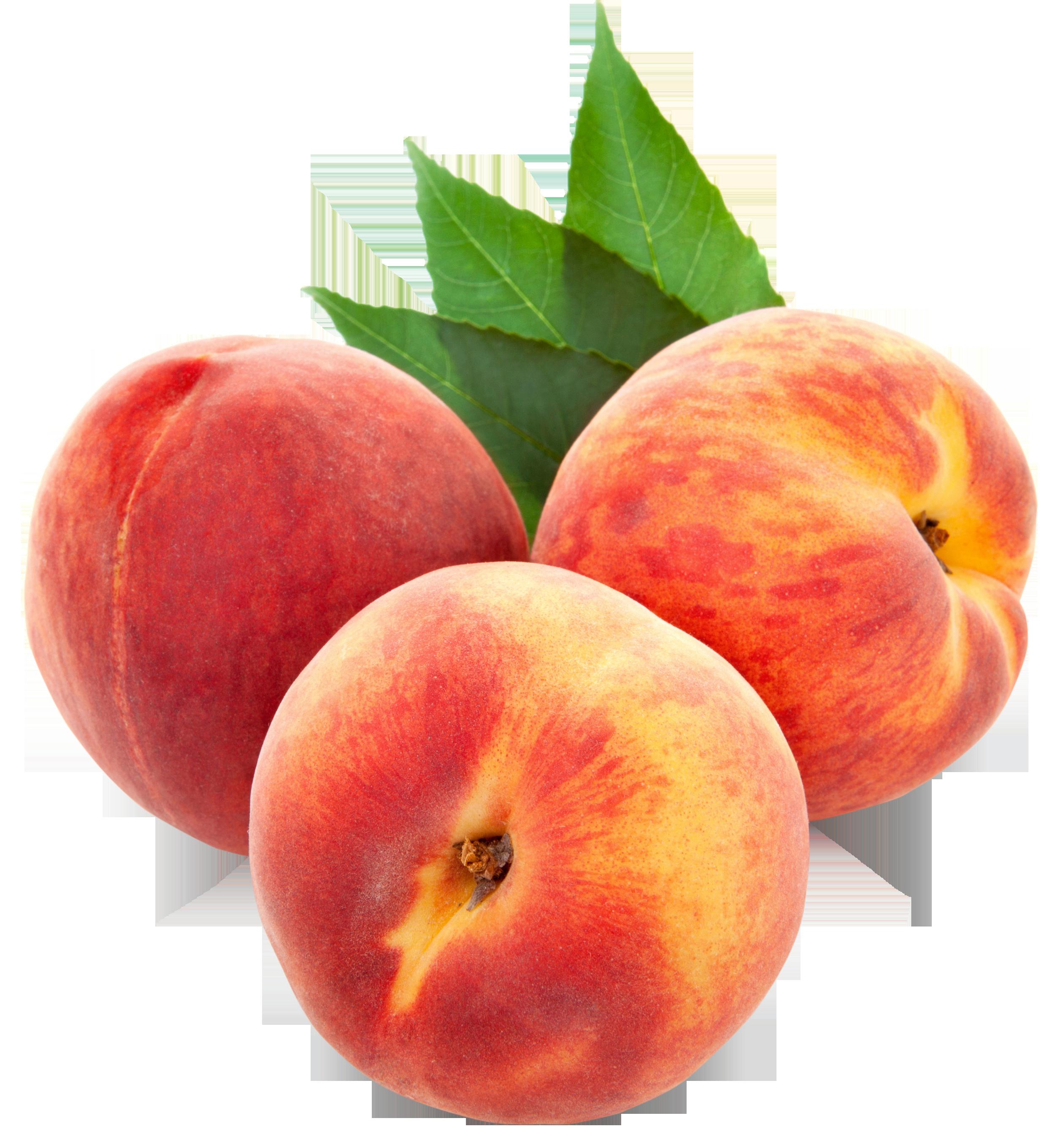 Peaches fruit clipart.