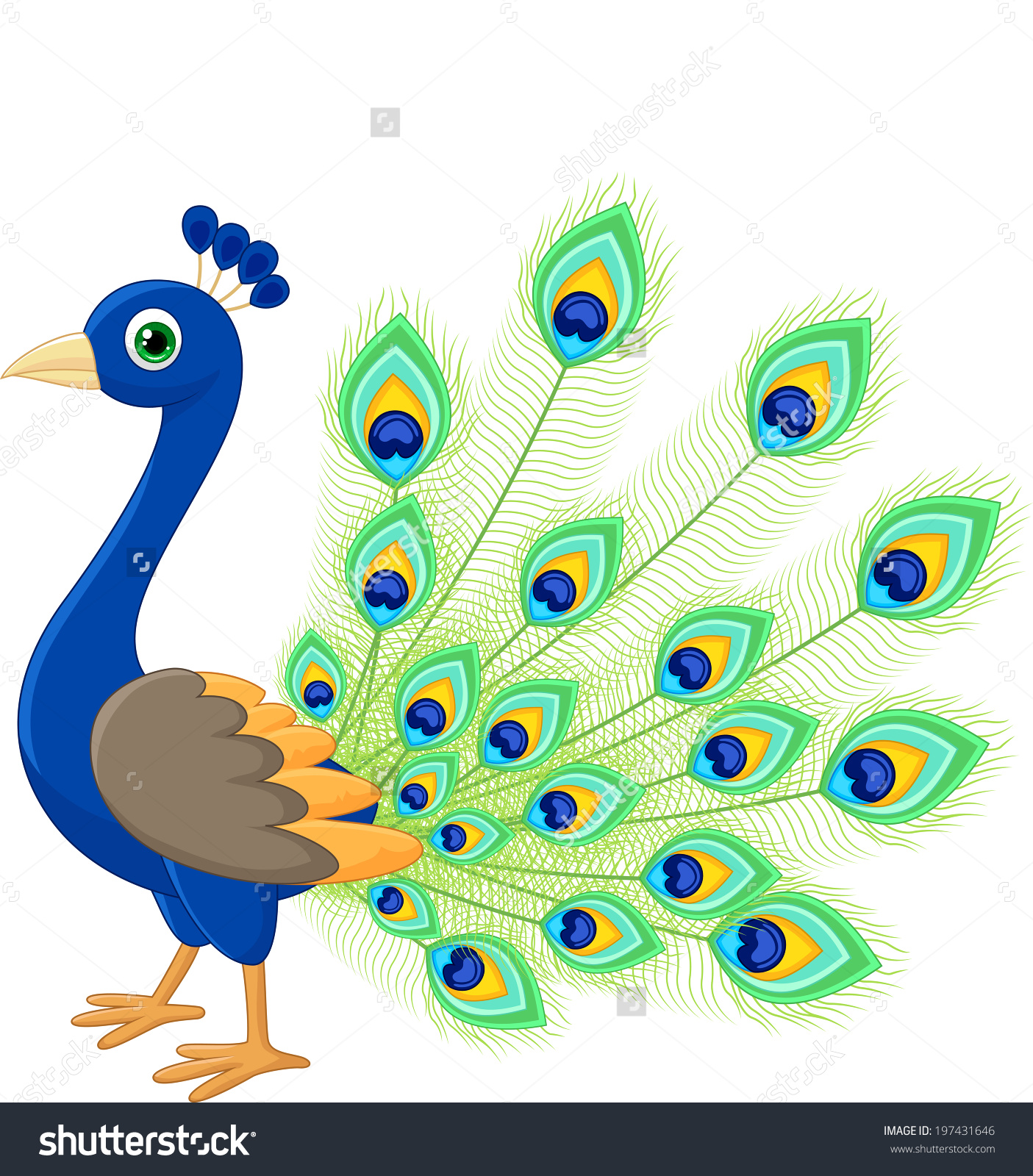 Peacock images clip art.