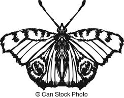 Peacock butterfly Vector Clipart EPS Images. 128 Peacock butterfly.