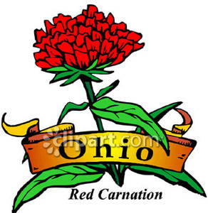 Flower of Ohio, the Red Carnation.