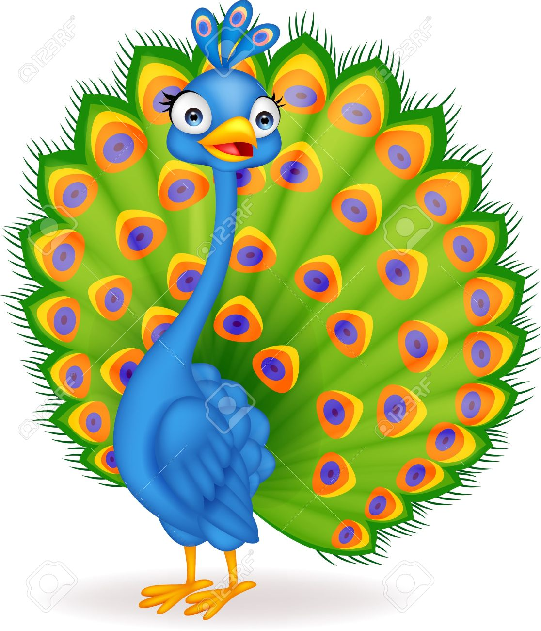 Best Peacock Clipart #12890.