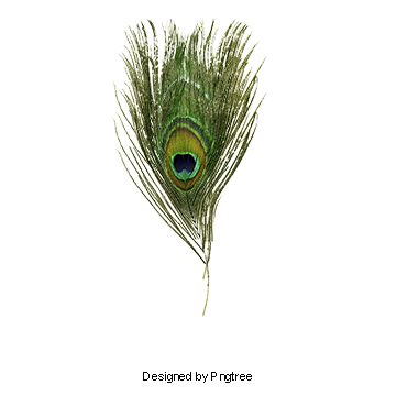Peacock Clipart Images, 67 PNG Format Clip Art For Free.